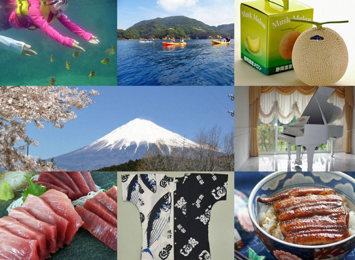 ふるさと納税ってなに?(後編)  静岡県の特色あふれるお礼の品10選
