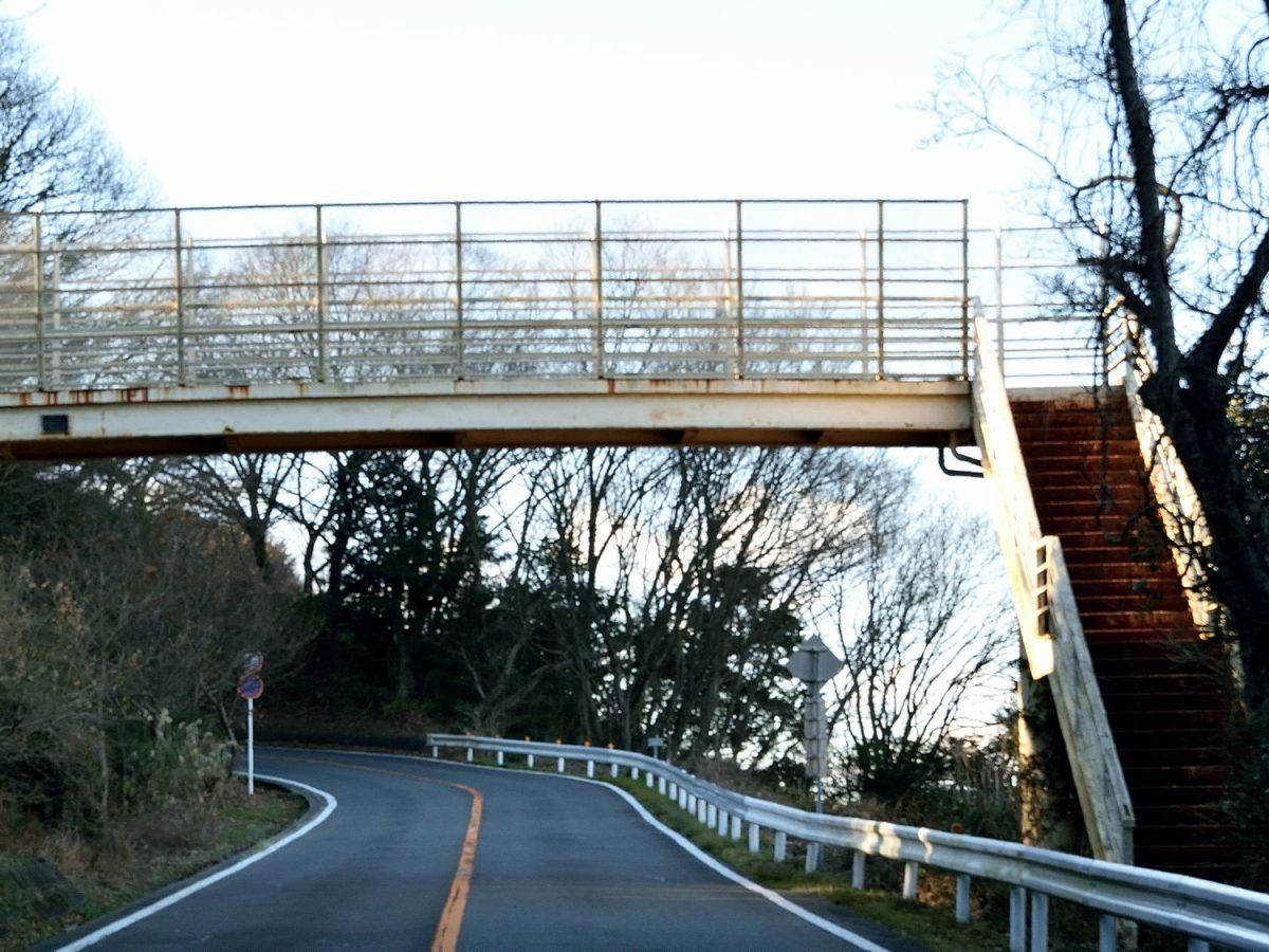 静岡のDeepな心霊スポット【第4話】 日本平パークウェイ歩道橋(静岡市駿河区)