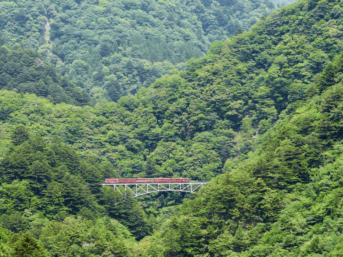 赤いトロッコで行くふれあいのローカル旅 感動に出会う大井川鐵道沿線の旅【5話目】