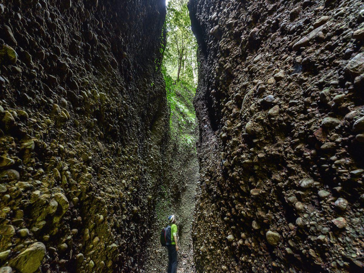 小ぶりでも奥深い?小笠山【miteco登山部】 森にひそむ秘境「六枚屏風」は圧巻の光景!