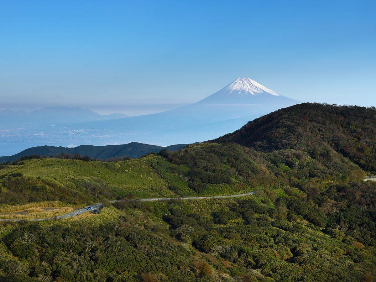 中伊豆のジオサイト「達磨山」【miteco登山部】 富士山をのぞむ海原越しの眺望は圧巻!