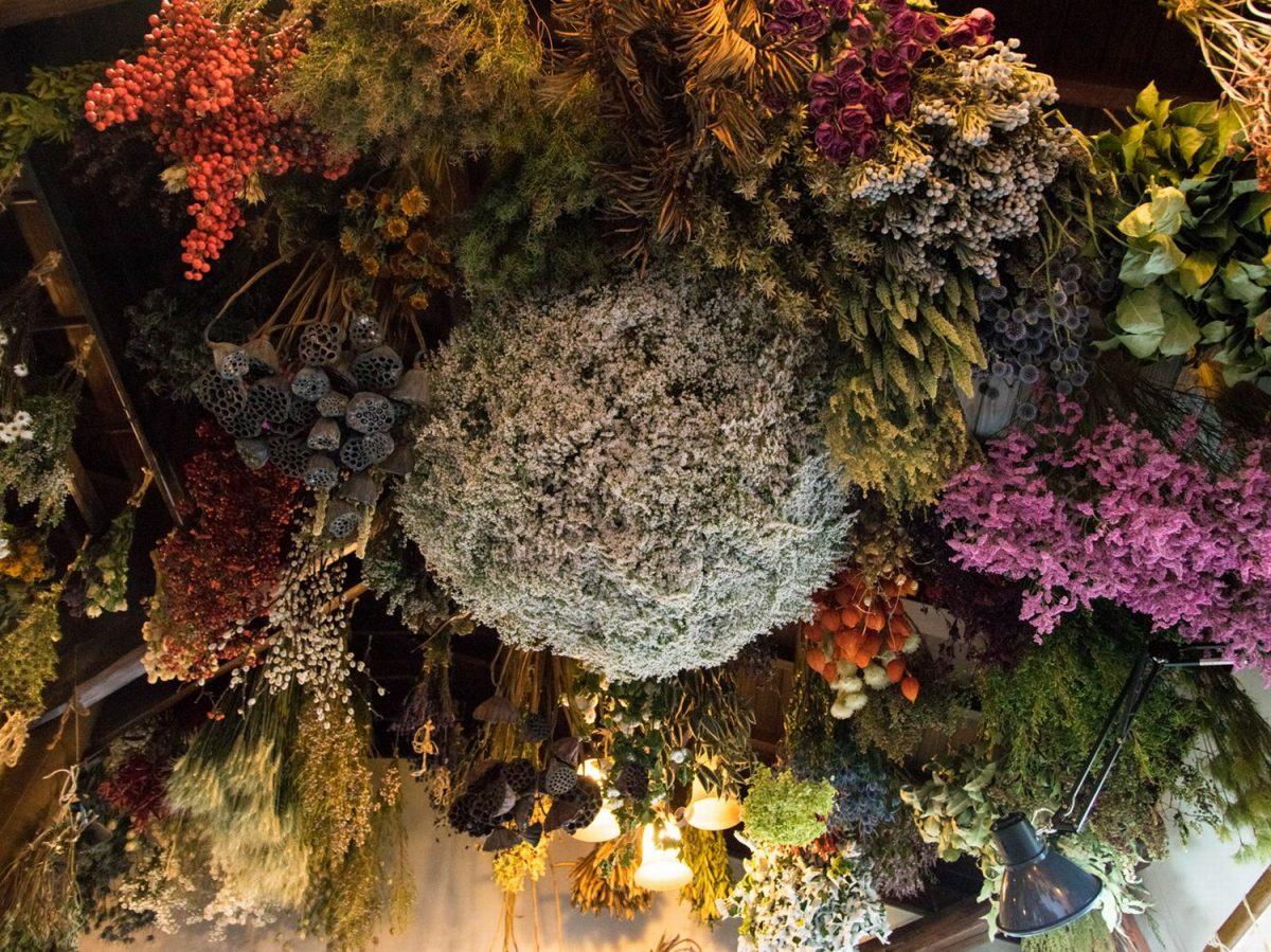 紫陽花から始まったドライフラワー専門店 草花に埋もれる日本平の一軒家・ダーワ